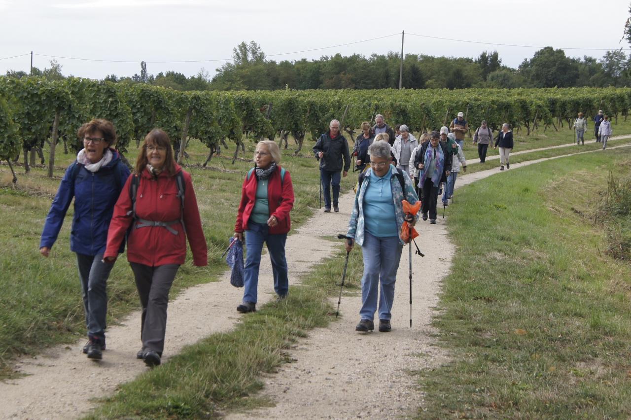 Marche a Saint-Pourçain