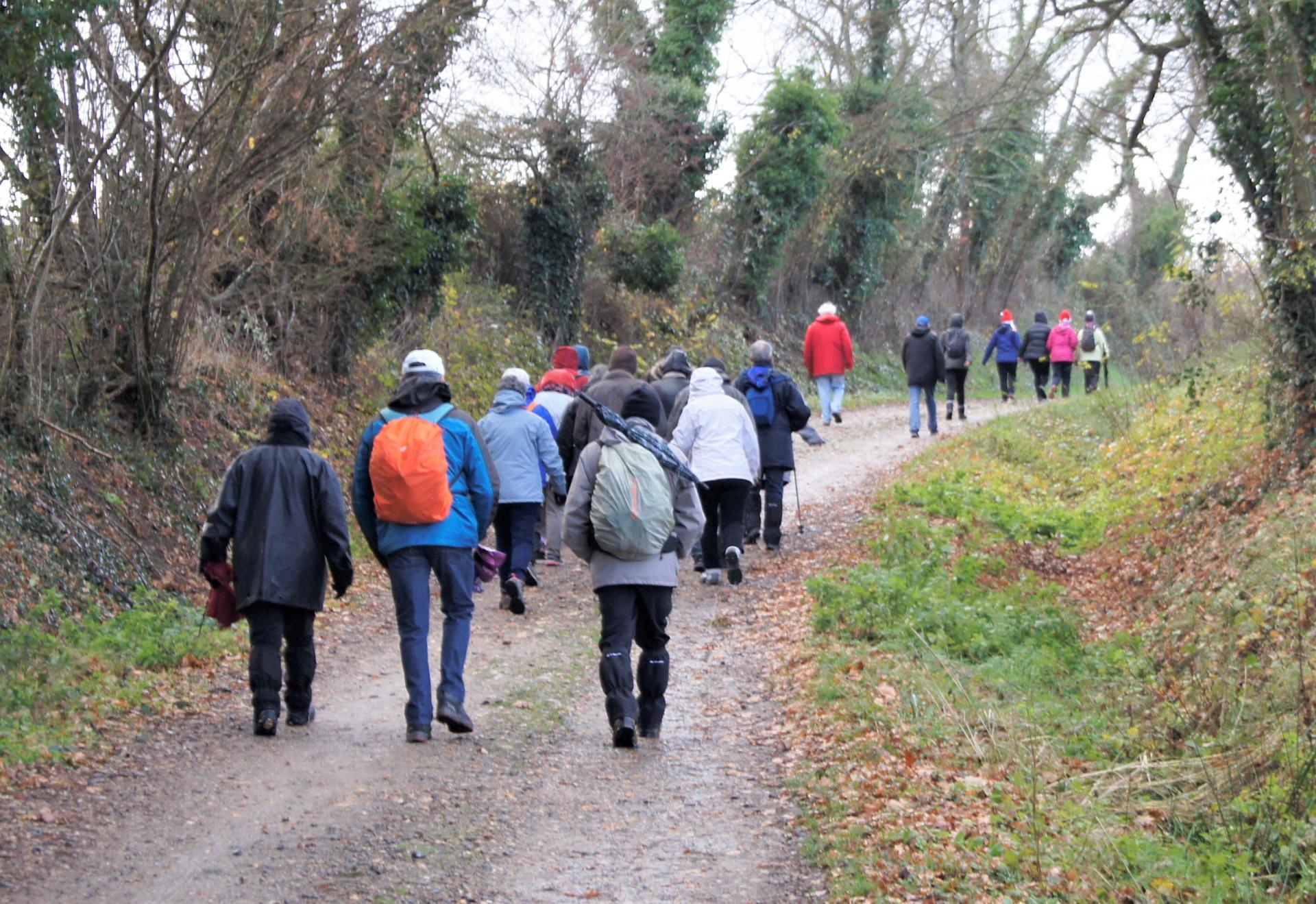 Marcheurs sur les chemins de Bellerive sur Allier-1