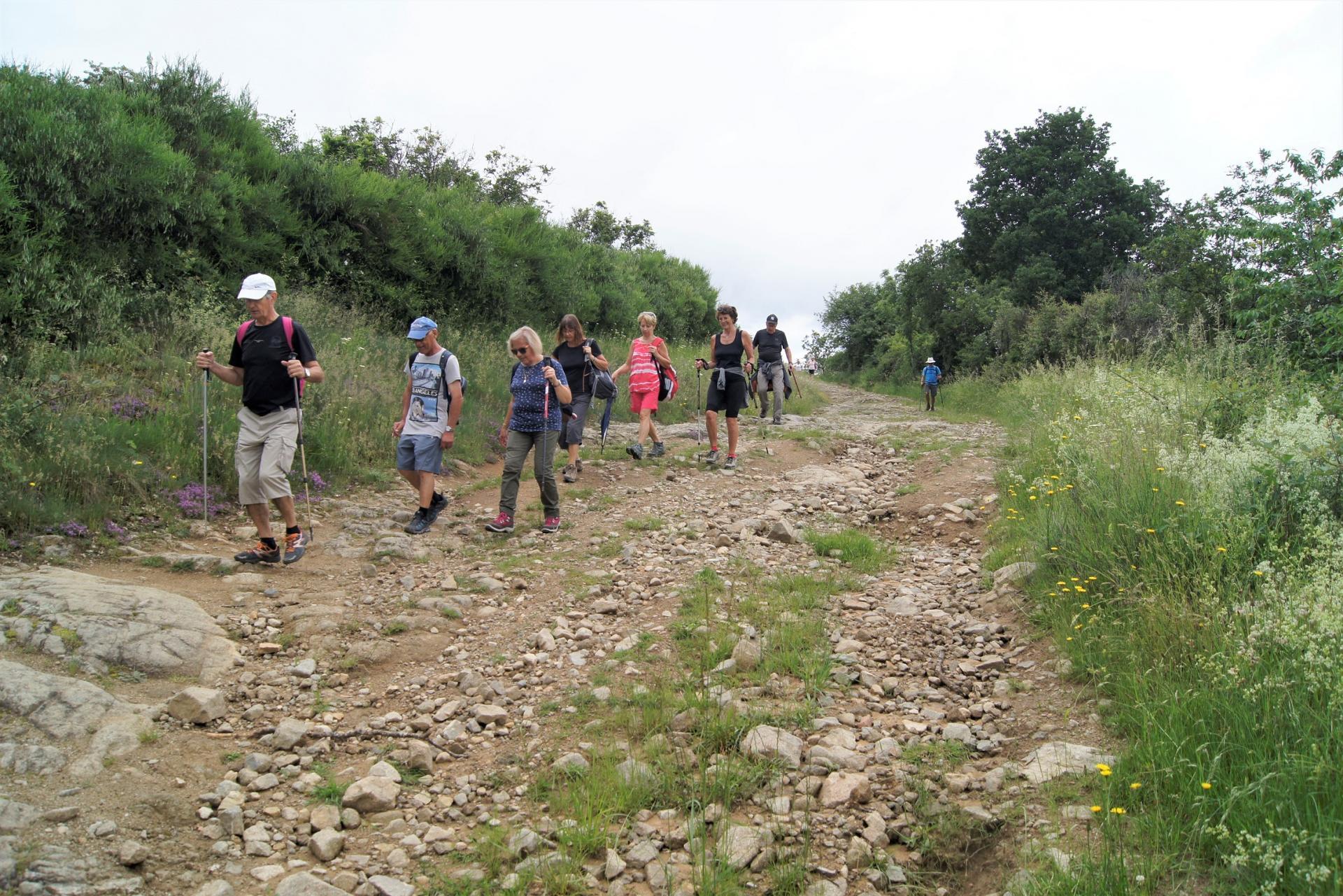 Marcheurs sur les chemins de Volvic