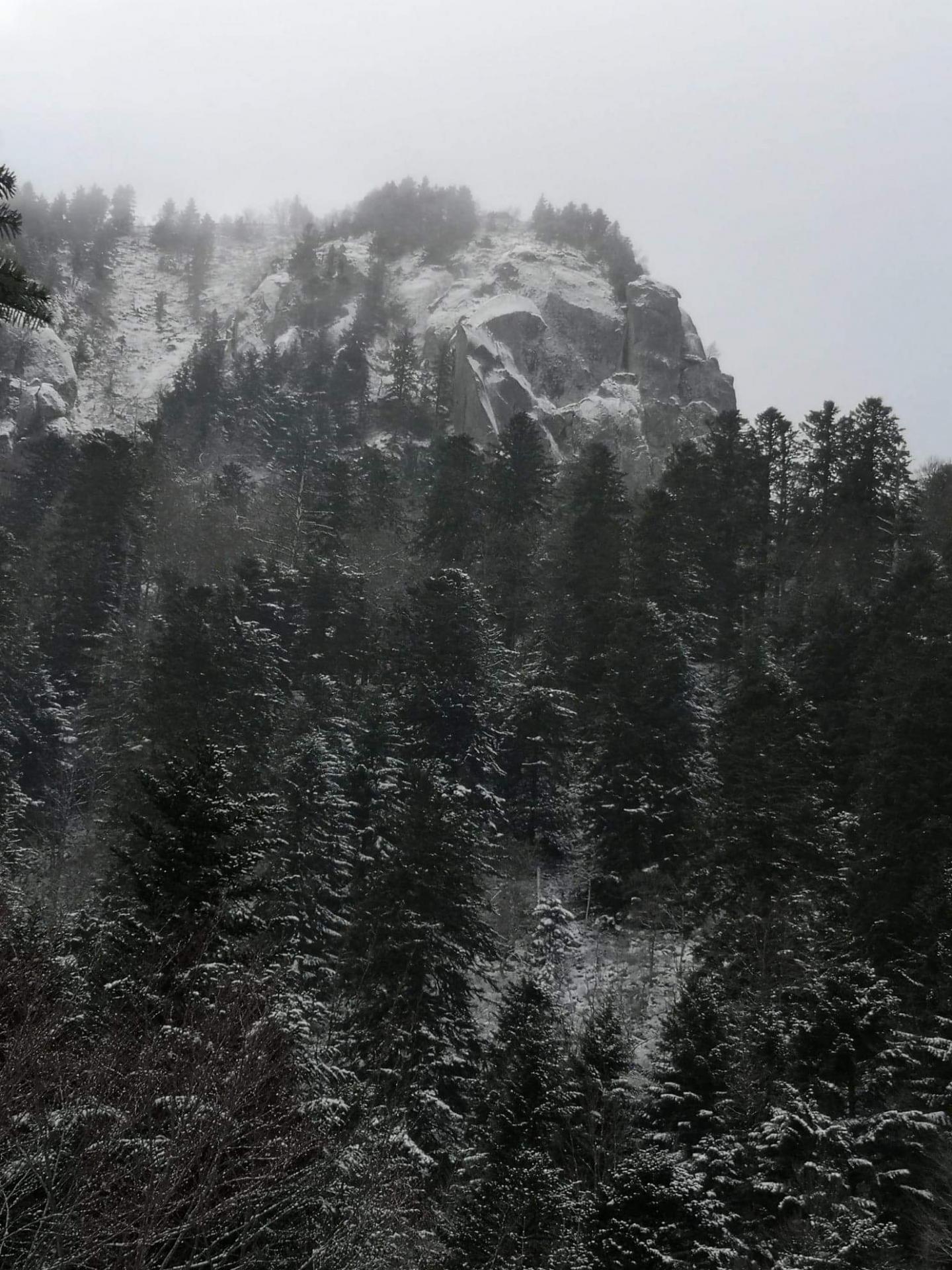 Paysage au Mont Dore