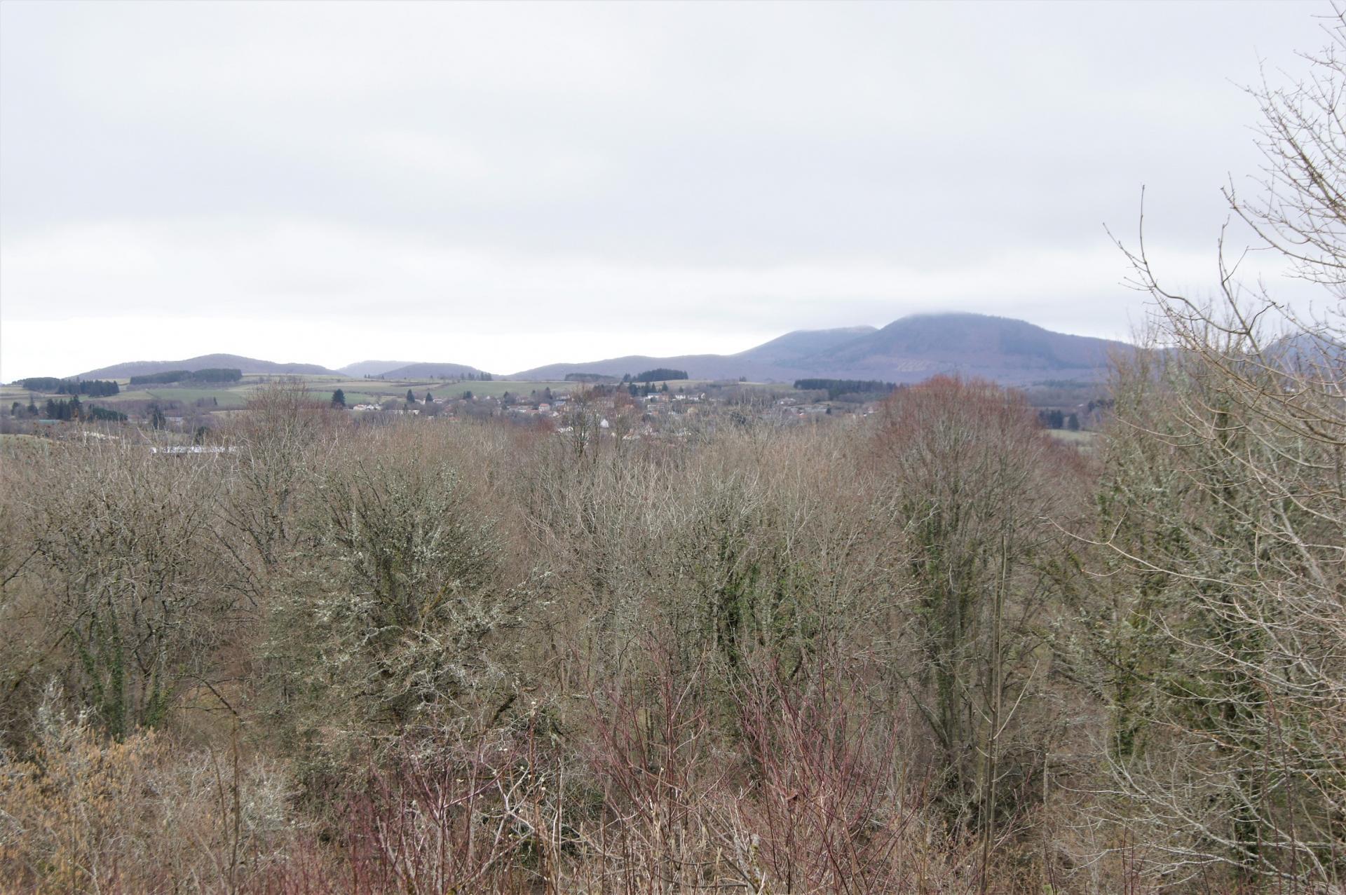 Paysage sur la randonnee a Chapdes-Beaufort