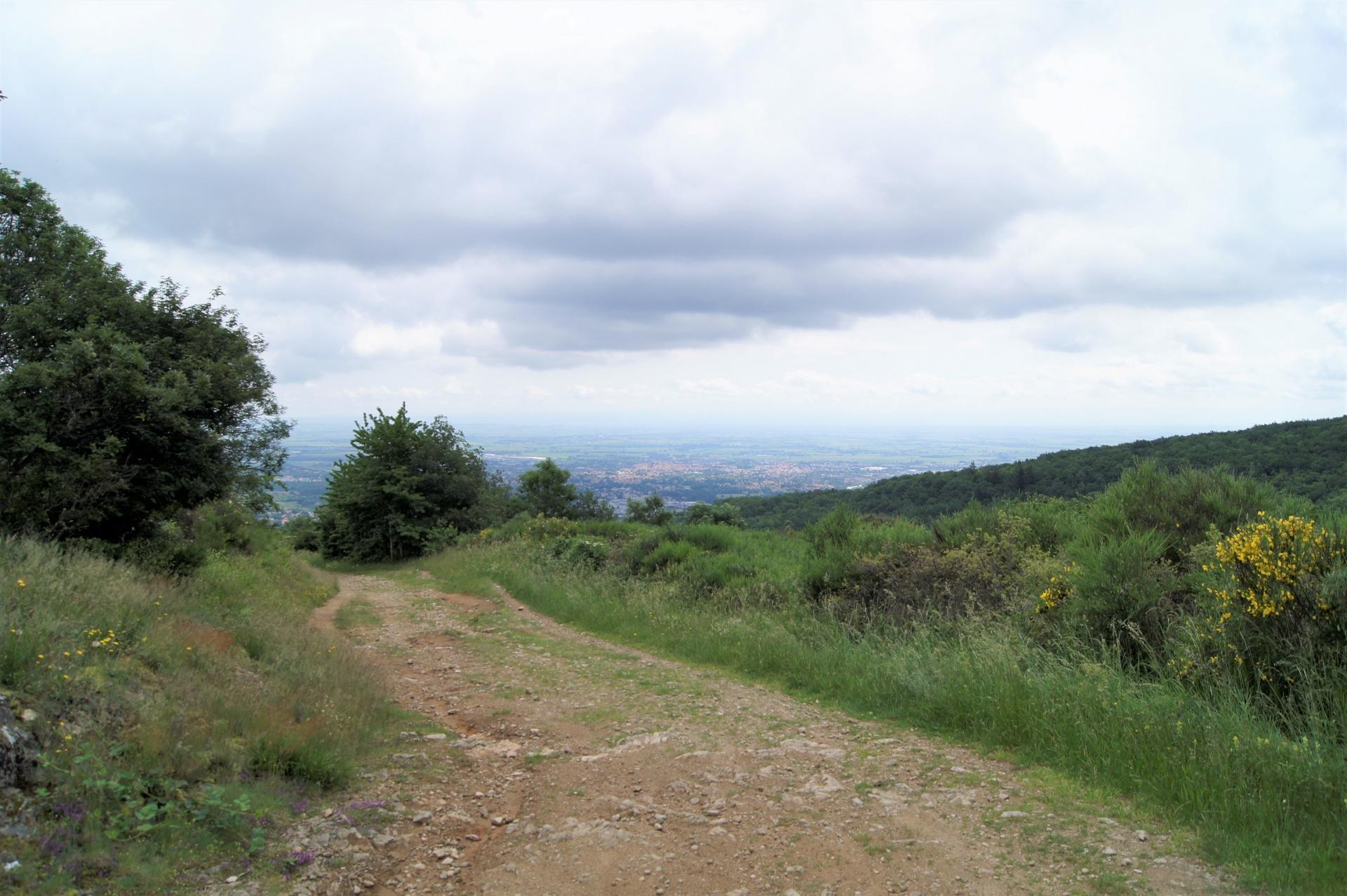 Paysage sur les chemin de Volvic